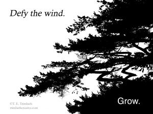 Defy the wind. Grow.